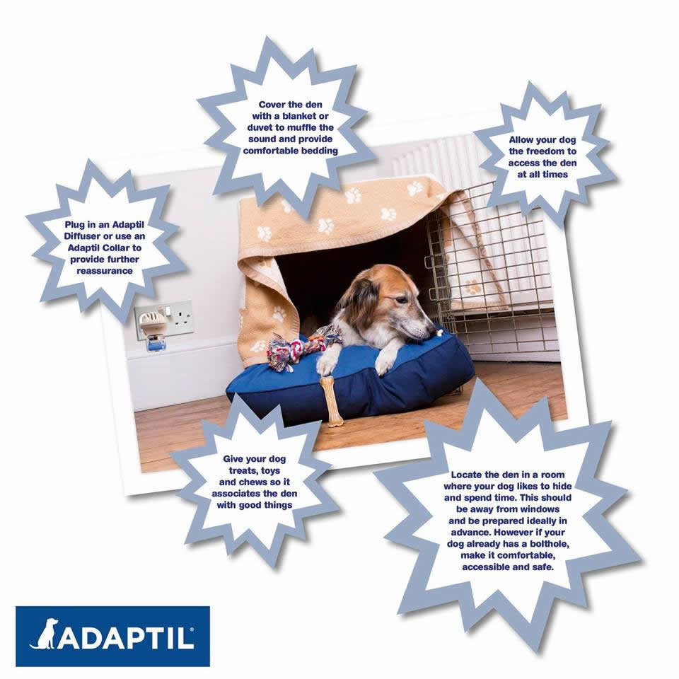 adaptil advice oak house vets