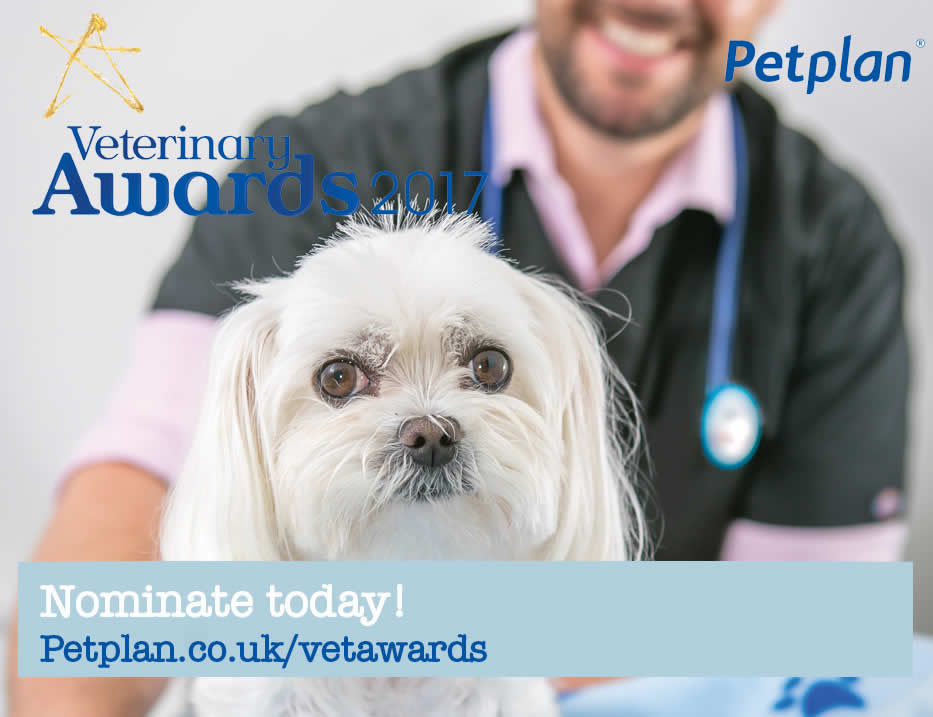 oak house vets petplan nominations now open - dog and vet
