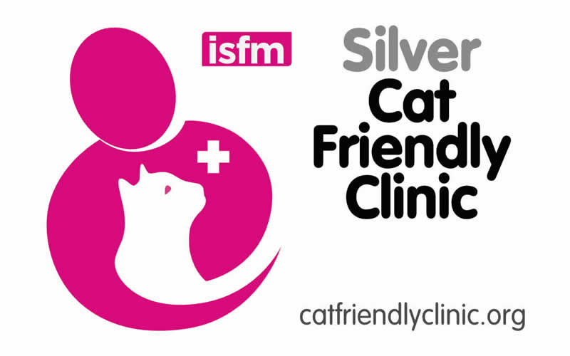Oak House Vets cat friendly clinic